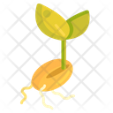 Seedling Spout Nature Icon