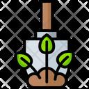 Seedlings Icon