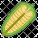 Seeds Sesame Food Icon