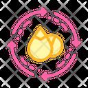 Crop Rotation Color Icon