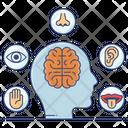 Sensory Activities Sensation Brain Response Icon