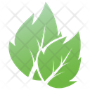 Serrated Leaf Icon