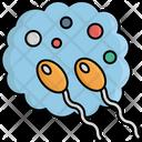 Sexual Sperm Icon
