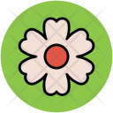 Shamrock Shape Flower Icon