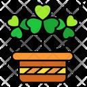 Shamrock Clover Lucky Icon