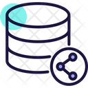 Share Database Share Data Icon