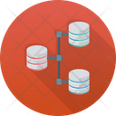 Share Network Database Database Network Icon
