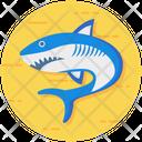 Fish Shark Aquatic Creature Icon