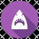 Shark Fish Whale Icon