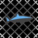 Shark Animal Wildlife Icon
