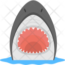 Shark Face Dangerous Icon