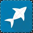 Figure Shark Sea Icon