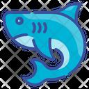 Shark Fish Animal Predator Aquatic Icon