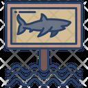 Shark Warning Icon