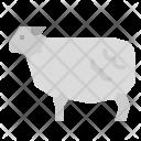 Sheep Animals Mammals Icon