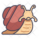 Shell Nature Snail Icon