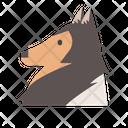 Sheltie Sheepdog Lassie Icon