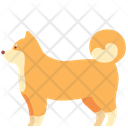 Animal Domestic Pet Icon
