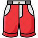 Shorts Underpants Knickers Icon