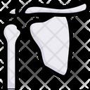 Shoulder Blade Icon