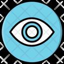 Show Password Privacy Icon