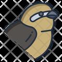 Shrikes Icon