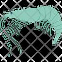 Marine Creature Prawn Sea Life Icon