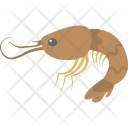 Shrimp Prawn Seafood Icon