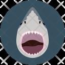 Shrk Sea Water Icon