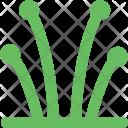 Shrub Icon