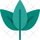 Shrub Leaf Nature Icon