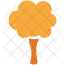 Generic Tree Maple Icon