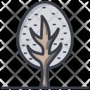 Shrub Tree Icon