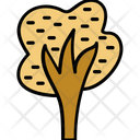 Tree Shrub Tree Nature Icon