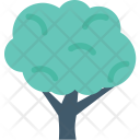Cypress Tree Shrub Icon