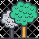 Trees Shrubbery Ecology Icon