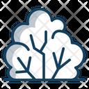 Shrubs Eco Ecology Icon