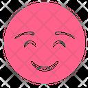 Shy Smiley Smile Icon