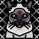 Siamese Cat Cat Cat Face Icon