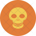 Signs Skull Dangerous Icon