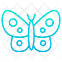 Silk Butterfly Icon
