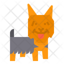 Silky Dog Icon