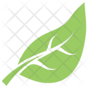 Shape Simple Botanical Icon