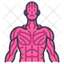 Sinews Muscle Icon