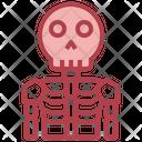 Skeleton Anatomy Spooky Icon