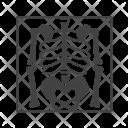 Skeleton Bones Medical Icon