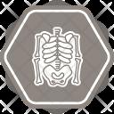 Skeleton Skull Death Icon