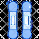 Ski Board Skateboard Winter Sports Icon