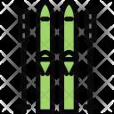 Skiing Sports Equipment Icon