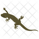 Skink Reptile Geckos Icon